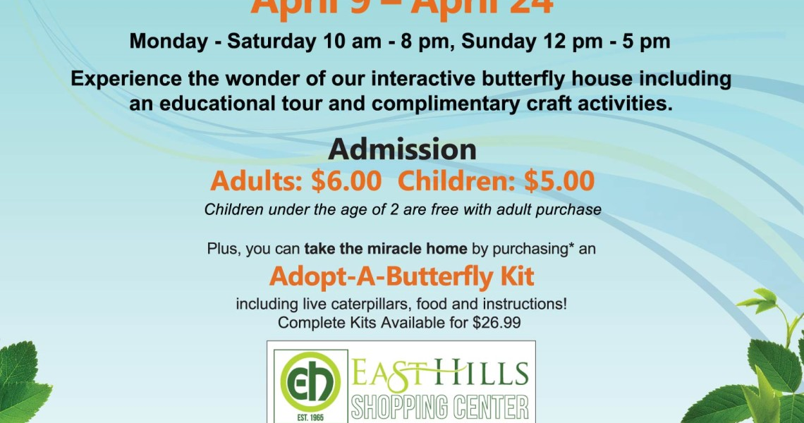 Butterflies at East Hills Shopping Mall