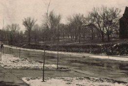 Noyes Boulevard